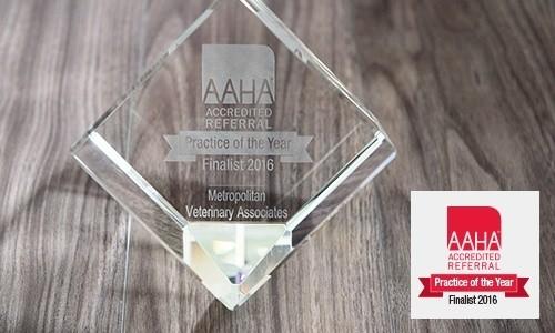 AAHA 2016 Award